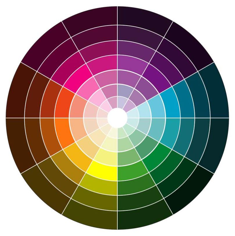 Chromatic Circle in brand design